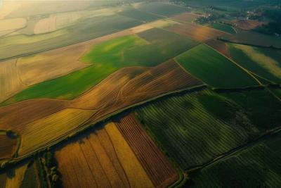Купля-продажа сельхоз паев